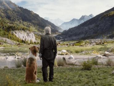 Фильм «Зов предков»: реальная история собаки (2020)