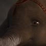 Фильм «Дамбо»: содержание, сюжет