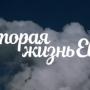 Сериал «Вторая жизнь Евы»: содержание, сюжет